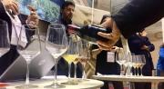 Vinitaly: esordio di successo per i vini calabresi