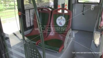 Scuola, l'appello dei sindaci del Pollino alle istituzioni: «Servono più mezzi di trasporto»