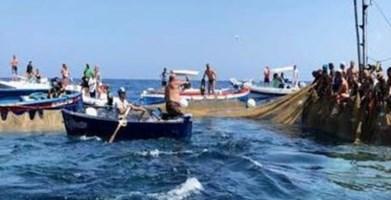 Pesca tonno rosso, cresce la quota riservata ai pescatori calabresi