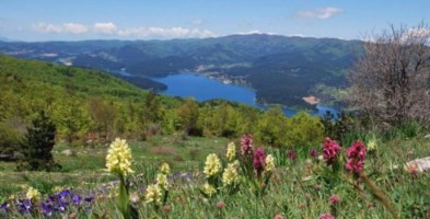Scorcio di uno del laghi silani (foto da touringclub.it)