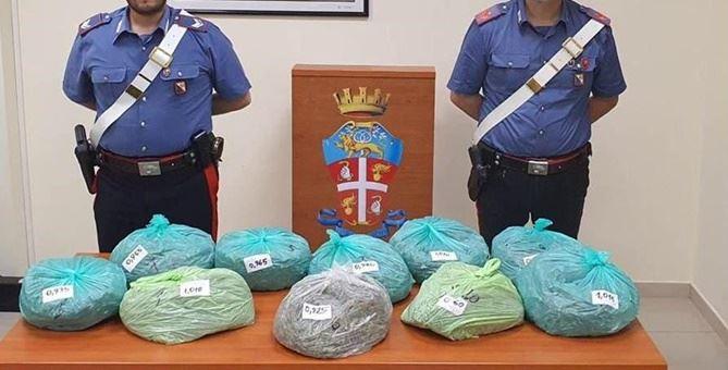 La marijuana sequestrata dai carabinieri di Locri