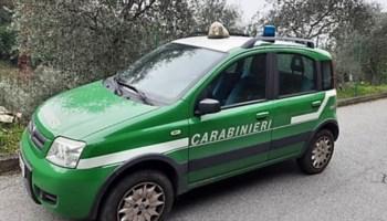 Sequestrato scarico di un'officina nel Cosentino: sversava oli in un fosso di raccolta acque