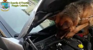 Sorpreso con oltre 4 chili di cocaina, arrestato ex noto allenatore nel Reggino