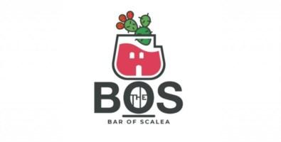Cooperazione commerciale, a Scalea nasce l'associazione Bos