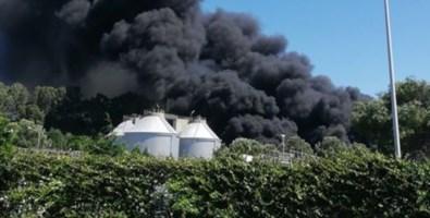 Vasto incendio nel depuratore di Gioia, vigili del fuoco sul posto: video