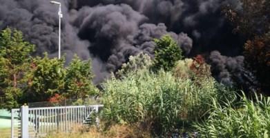 Depuratore di Gioia Tauro, è doloso l'incendio divampato ieri pomeriggio: video