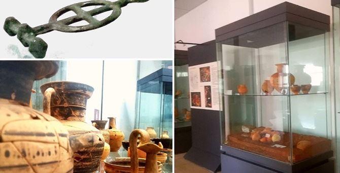 Alcuni dei reperti presenti all'interno del museo