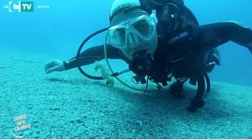 Immersione nei fondali di Marina di Gioiosa Ionica