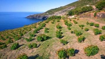 Pantelleria, foto ansa