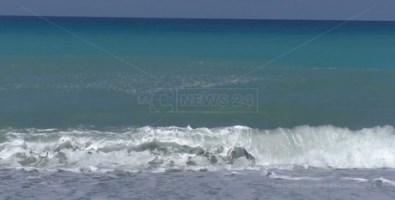 Tirreno cosentino: stessa spiaggia, stesso mare... sporco