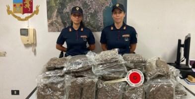 Crotone, trovati 20 chili di marijuana nascosti in un canale di scolo
