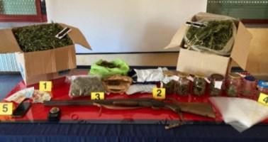 Davoli, in casa con 5 chili di marijuana e 24 piante di canapa: arrestato