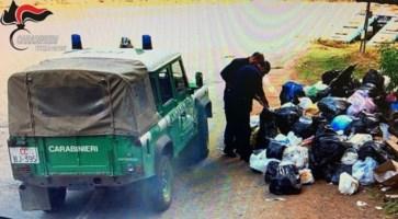 I controlli dei carabinieri forestali in Sila