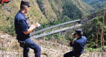 Le indagini dei carabinieri sull'incendio nel Cosentino