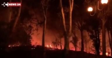 Gli incendi che hanno sconvolto il Tirreno cosentino