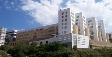 Covid e università, l'altra faccia della medaglia: boom di iscrizioni anche a Reggio Calabria