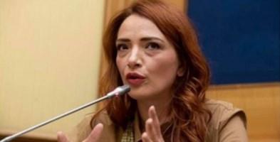 La Sardina calabrese: «La sinistra riscopra il popolo e rinnovi la politica»