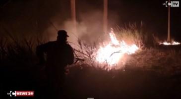 Nocera Terinese, in fiamme l'area stoccaggio dei rifiuti: le telecamere inquadrano il piromane