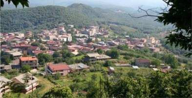 Sinopoli