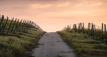 Zone rurali, finanziamenti in arrivo per Civita e San Basile