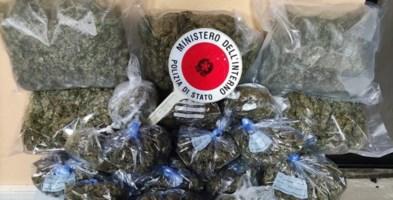 Crotone, 4 chili di marijuana scoperti in un magazzino: arrestato 61enne
