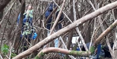 Cadavere rinvenuto nelle Preserre vibonesi: è in un bosco nella zona Ariola di Gerocarne