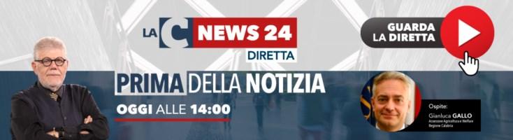 Prima della notizia: Calabria zona rossa tra polemiche e proteste - IL VIDEO