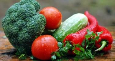 Lamezia, presentata la prima fiera virtuale dell'agricoltura