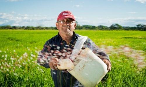 Dalla Regione oltre 8 milioni per il settore agroalimentare