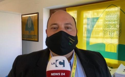 Antonello Fonsi - Presidente zonale (Rossano)