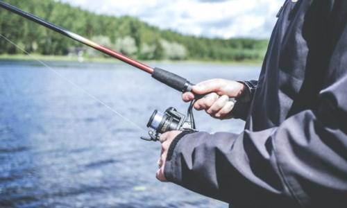 Ripartono caccia e pesca in Calabria, nuova ordinanza della Regione