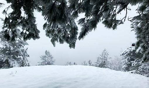 La neve in Sila - foto d'archivio