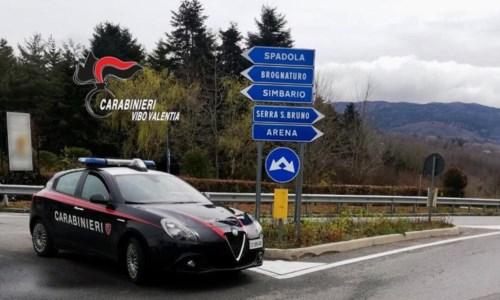Asporta la rete di recinzione dell'autostrada, arrestato uomo nel Vibonese