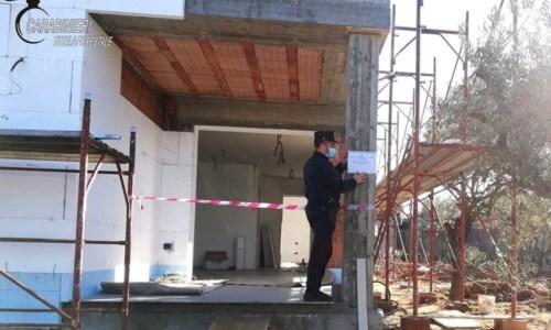 Bisignano, ulivi estirpati per costruire una villa con piscina: sequestro e multa da 10mila euro
