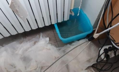 Catanzaro, centro Covid a Villa Bianca: durante le prove tecniche le stanze si allagano