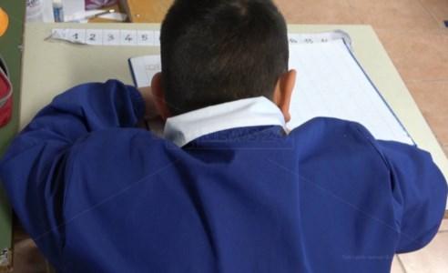 Scuola, la mamma di un bimbo autistico: «Mio figlio migliorato con la didattica integrata»