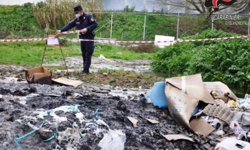 Cosenza, sequestrata azienda avicola: deferiti i due amministratori