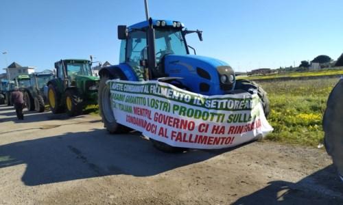 Fondi alluvione, isola Capo Rizzuto: agricoltori in protesta contro Regione e Governo
