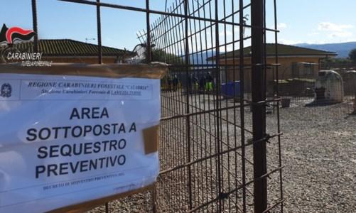 Maltrattamento di animali, sequestrato canile comunale di Lamezia