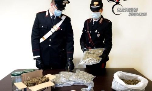 Trovato con circa 2 chili di marijuana in casa: arrestato 43enne di Cittanova