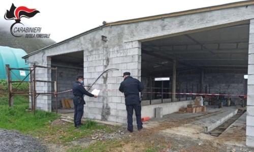 Abuso edilizio nel Cosentino: sequestrata una struttura rurale a Maierà