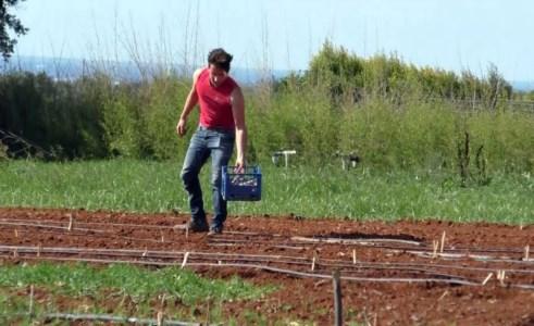 Prima Fiera agricola on line dal 29 gennaio al due febbraio