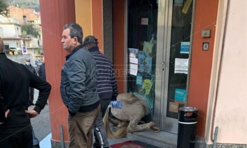 Il cavallo si imbizzarrisce e sfonda una porta a vetri: ferito il giovane disarcionato