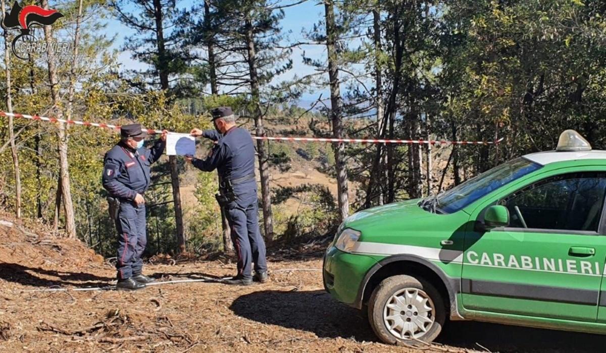 I carabinieri forestali appongono i sigilli all'area sequestrata