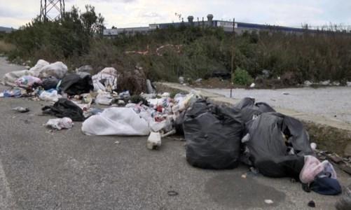 Degrado e mancanza di servizi, l'area industriale di Lamezia in cerca di riscatto