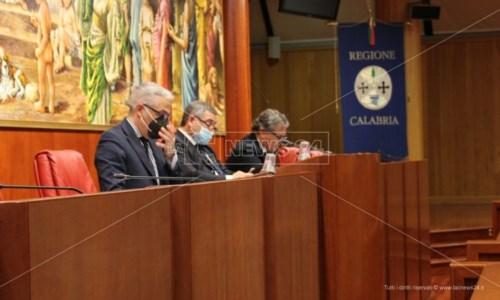Consiglio, Tallini attacca e Spirlì deraglia: «Elezioni? Inutile scatola di cartone dove infilare la scheda»