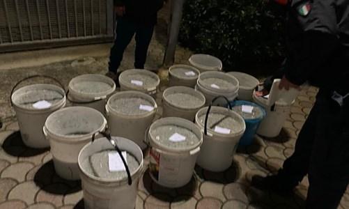 Corigliano Rossano, sequestrati 750 chili di bianchetto: sanzioni fino a 25mila euro