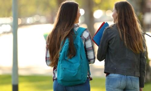 Molestie a studentesse, il Senato accademico di Catanzaro: «L'Ateneo adotti misure più efficaci»