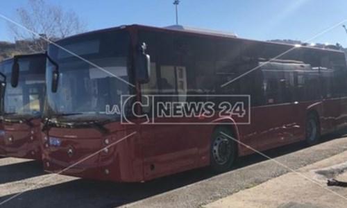 Cosenza, autista bus sorpreso a forzare la cassetta delle monete: arrestato
