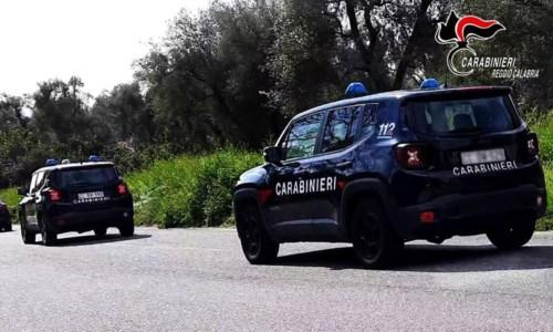 Controlli dei carabinieri alle aziende agricole della Piana: sanzioni per 14mila euro